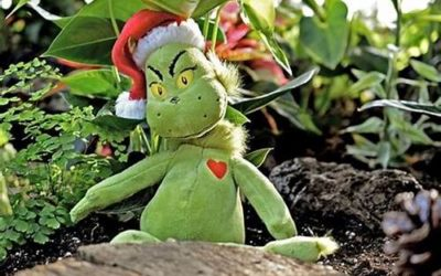 How not to let the Grinch and a Grudge steal your holiday joy