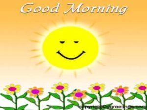 Good Morning Sun